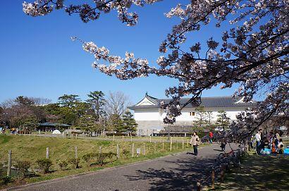 桜咲く駿府城公園-2