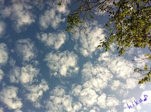 クラゲ雲・・・?