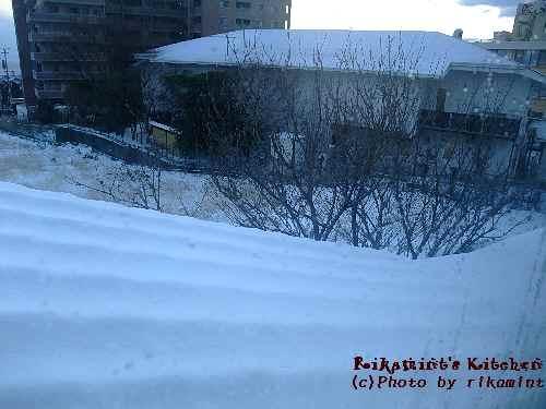DSCF1・16雪 (5)