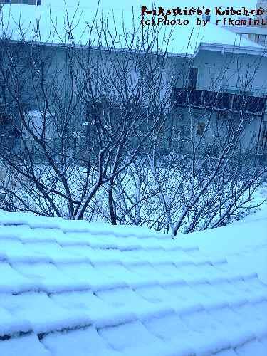 DSCF1・16雪 (3)