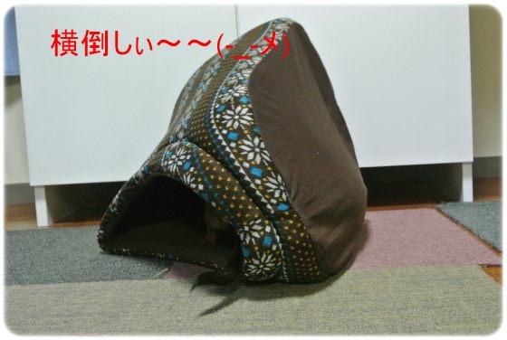 DSC_5943.jpg