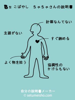 setumeishotyako.jpg