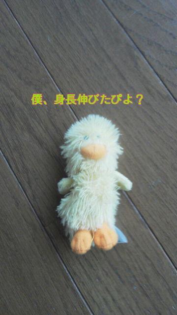 20120607100639_20120613080947.jpg