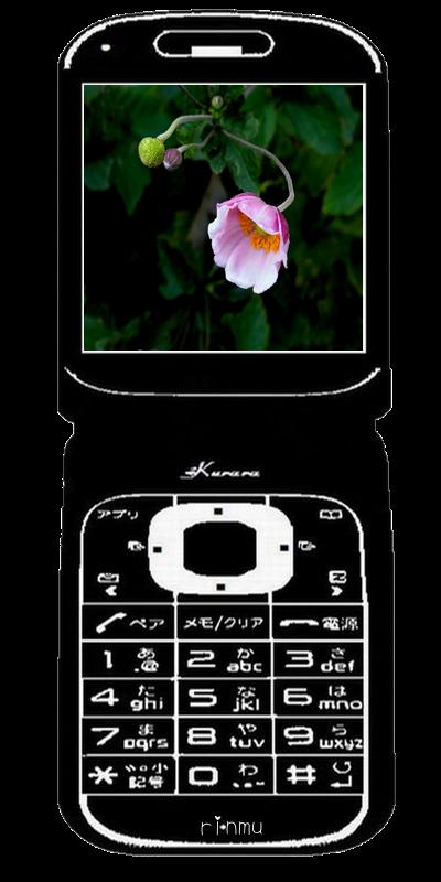 734○110携帯電話