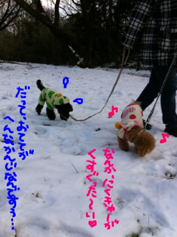 雪の上では普段と正反対なフタリです