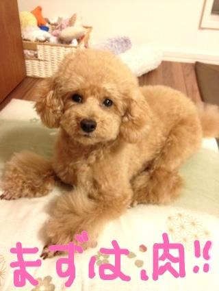 iphone_20120112202847.jpg