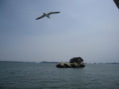 松島遊覧2