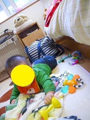10_20121029202513.jpg