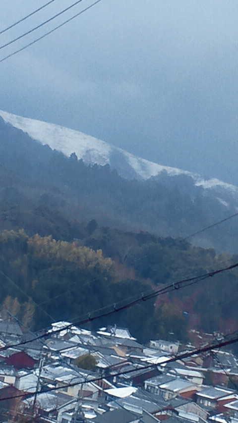 奈良県 雪