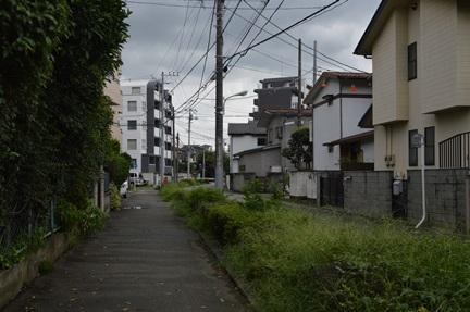 2014-08-30_66.jpg