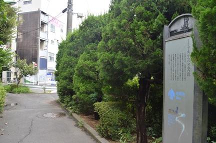 2014-08-30_85.jpg