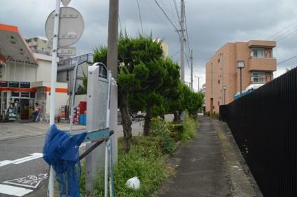 2014-08-30_98.jpg