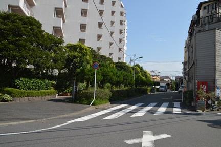 2014-09-12_126.jpg