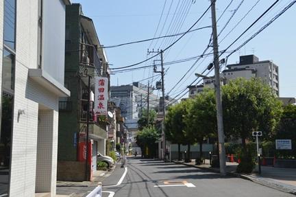 2014-09-12_19.jpg