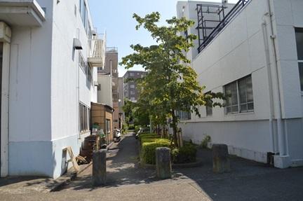 2014-09-12_90.jpg
