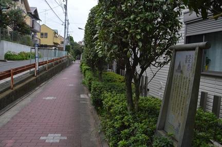 2014-09-20_10.jpg