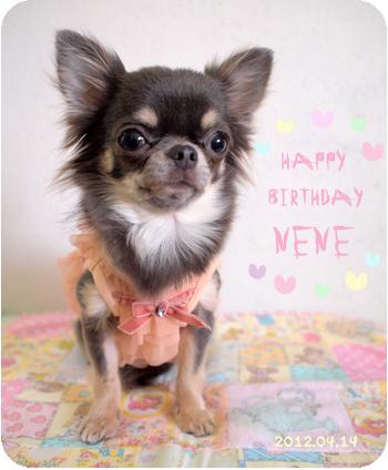nene-birthday.jpg