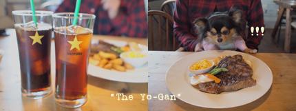yo-gan-3.jpg