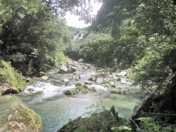 大隅滝見ツーリング 荒平天神 雄川の滝 神川大滝 (20)