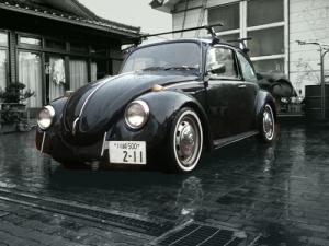 rain_bee.jpg