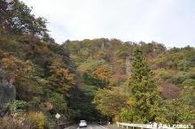 2011110608.jpg
