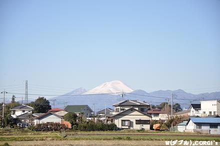 2011121001.jpg