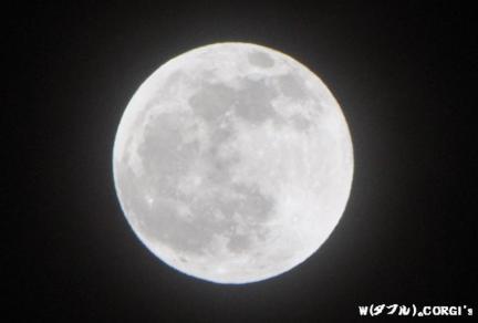 2011121101.jpg