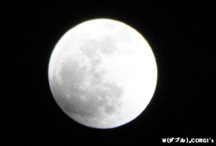 2011121102.jpg
