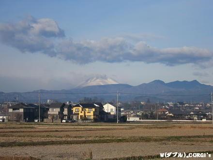 2011122206.jpg