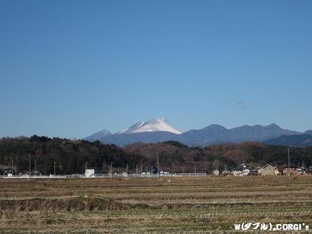 2011122801.jpg