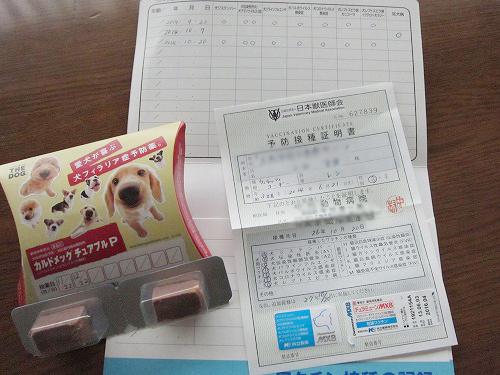 3回目のワクチン終了~
