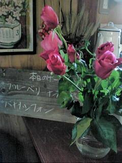 20110128こむぎカフェ1