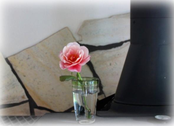 ストーブ上のバラ