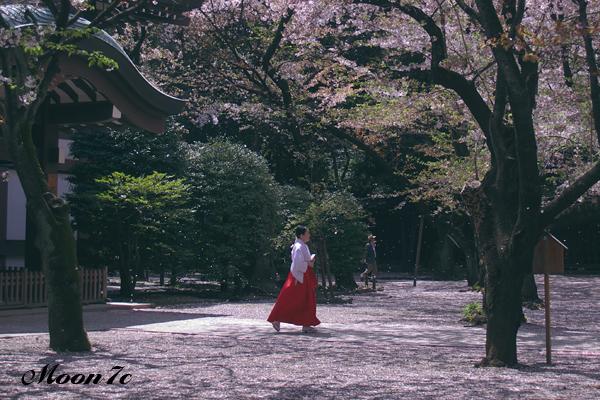 靖国神社の巫女さん
