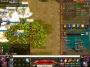 20110103_1_sute.jpg