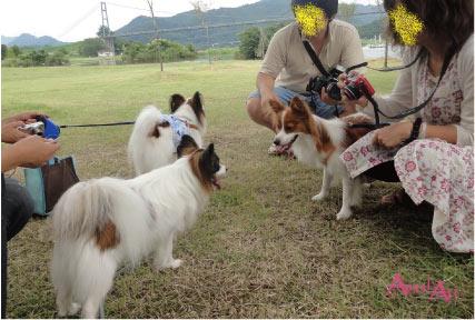 2011miyagase6.jpg