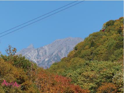 20121021-12.jpg