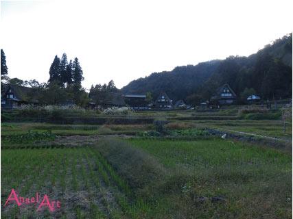 20121022-42.jpg