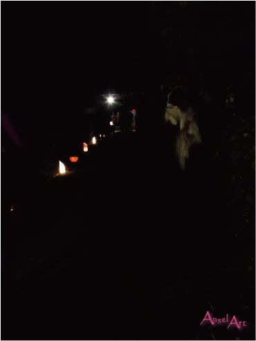 20121118-23.jpg