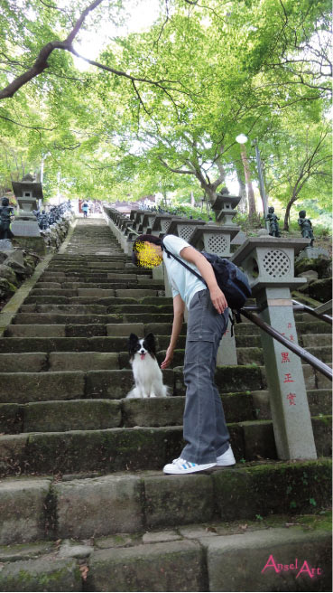 ooyama2012-5.jpg