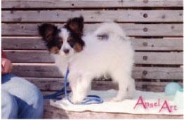 papi4-1994.jpg