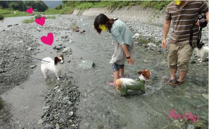 yadoriki4-4.jpg