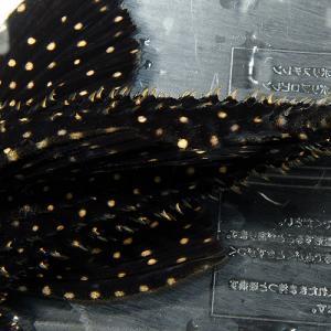 キングオブギャラクシ (4)