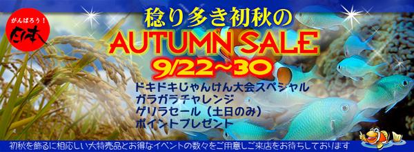 banner_2012autumn-thumbnail2.jpg