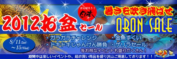 banner_obonsale-thumbnail2.jpg