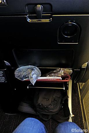 JAL B777-300ER、PY座席の足元