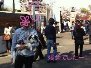 zoheikyokumae.jpg