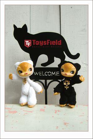 ToysField 1