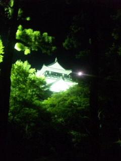 岡崎城ライトアップ