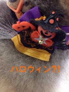 201410151905043a4.jpg